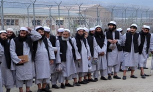 Afghan Govt., Taliban Agree to Doha as Venue for 1st Peace Talks