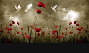 آیین گرامیداشت شهید «صادقی» برگزار میشود