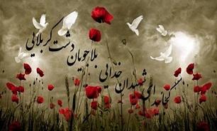 برگزاری یادواره 305 شهید لارستان
