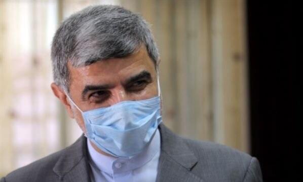 مشارکت گسترده ایرانیهای مقیم لبنان در انتخابات/ شکست تبلیغات دشمنان